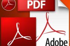 Скачать Adobe Reader для Windows 10 бесплатно